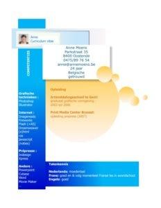 Screenshot CV Voorbeeld 6